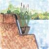 Береговой карман для водных растений