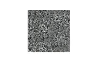 Плитка полированная пироксенит элит 300*300*12мм