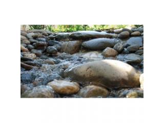 Насос для водопадов и фильтрации Eco-X2 10000